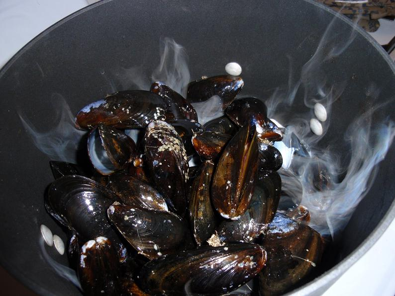 Mussels cooking